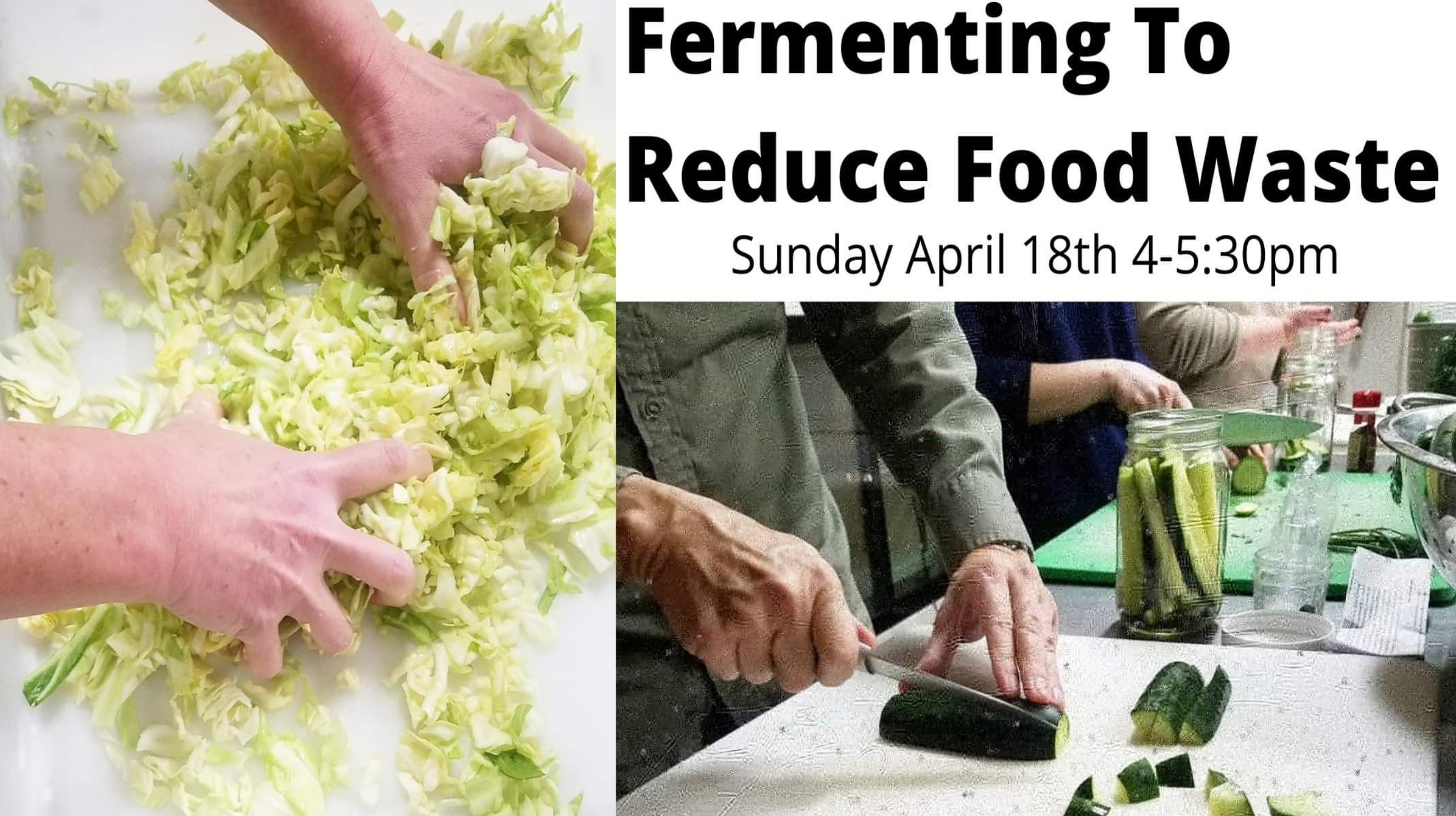 Fermenting to Reduce Food Waste